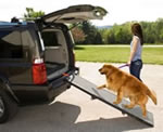 manufactured dog ramps