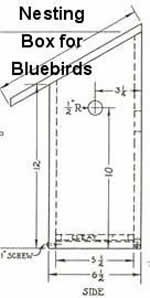 How To Build A Birdhouse 38 Free Plans Plans 1 to 8