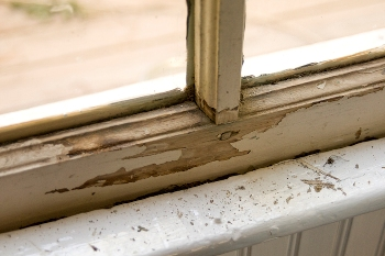 Flaking paint from a water damaged window frame