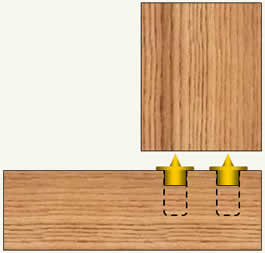Dowel transfer plugs positioned in wood pieces