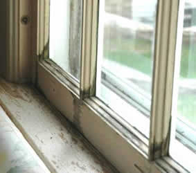 Choosing replacement windows for Choosing replacement windows