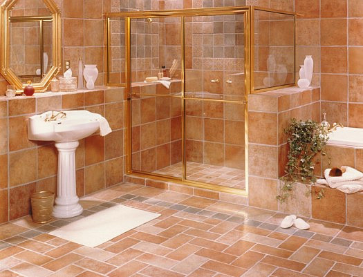 Bathroom Shower and Tub Enclosures
