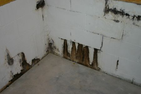 Figure 1   Water Seepage Through Mortar Joints
