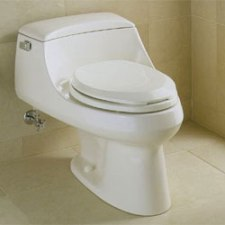 one piece toilet - integral tank and bowl