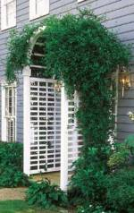 easy to construct arbor plans