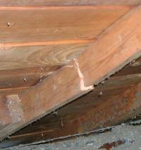 Damaged Roof Rafter